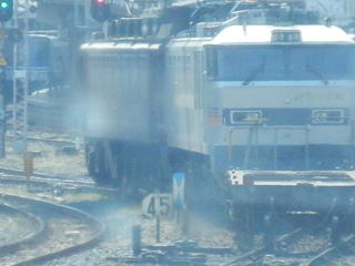 P5081333.JPG
