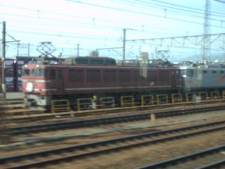 P5081337.JPG