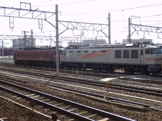 P5081348.JPG