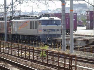 P5081351.JPG