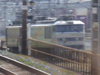 P5081354.JPG