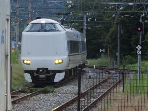 P8170991.JPG
