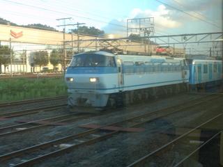 P9091846.JPG
