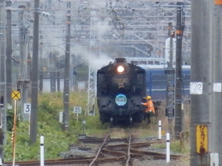 PB150461.JPG