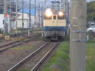PB150496.JPG